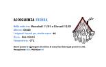 accoglienza-fredda-11-12-gennaioweb